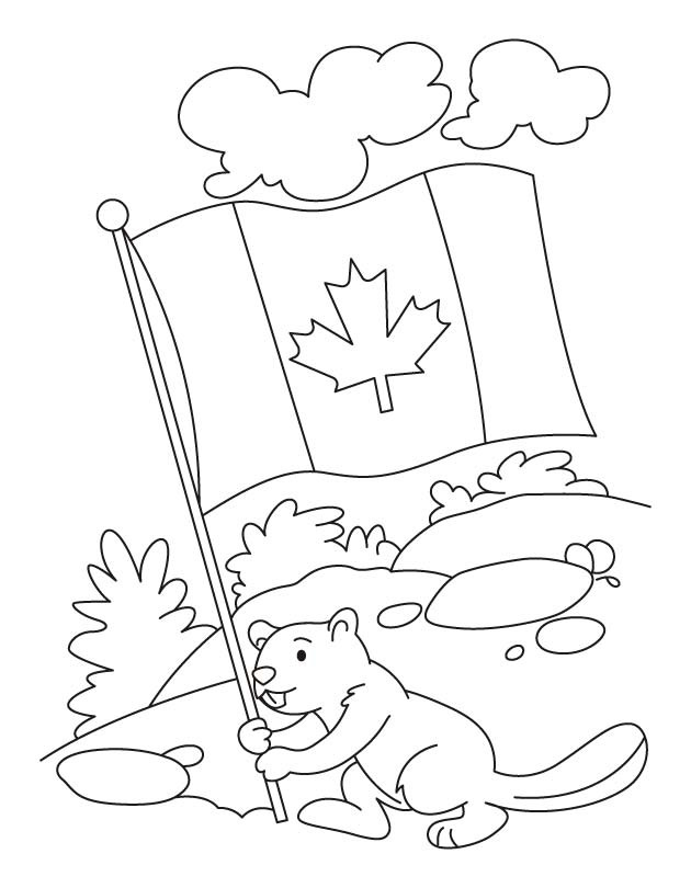 - Colouring Page Beaver Holds Canadian Flag Coloringpage.ca